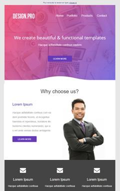 Templates designpro.jpg